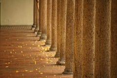 город осени расквартировывает желтый цвет валов листьев Стоковое фото RF