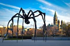 Город Оттавы и канадский парламент Стоковые Изображения RF