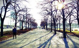 Город Польша Варшавы Стоковое Изображение RF
