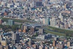 Город Саппоро, взгляд от держателя Moiwa Стоковое Изображение