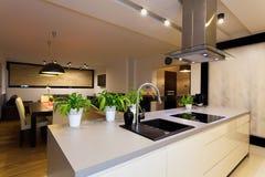 Городская квартира - счетчик кухни стоковое изображение rf