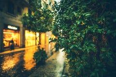 Городские зеленые сады Стоковое Изображение RF