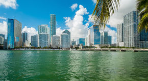 Городской Майами стоковое фото
