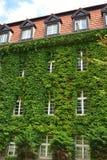 Городской дом с зелеными стенами Стоковая Фотография