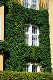 Городской дом с зелеными стенами Стоковые Фотографии RF