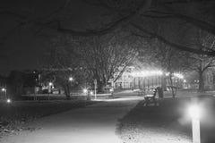 Городской парк берега реки Стоковые Фото