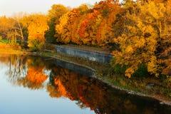 Городской парк осенью Стоковое Фото