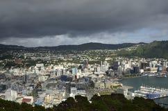 Городской пейзаж Веллингтона, NZ Стоковые Изображения RF