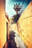 Городской пейзаж лета с узкой улицей в Фуншале, Мадейре Стоковые Фото