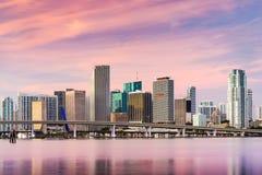 Городской пейзаж Майами Флориды Стоковая Фотография