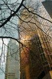 Городской пейзаж с skycrapers в городском Торонто Стоковые Фото