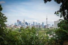 городской пейзаж Торонто Стоковые Изображения RF