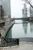 городской пейзаж chicago Стоковые Фотографии RF