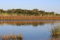 Город Техас моста дороги парома болота Стоковые Фото