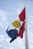 Город флага DallasTexas Стоковое фото RF