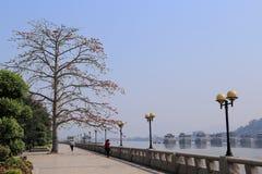 город chaozhou, Гуандун, фарфор стоковое изображение rf