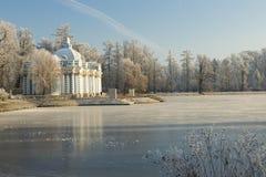 Город Pushkin в зиме Стоковые Изображения RF