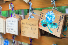 Гортензия на деревянной моля плите в японском виске Стоковые Фото