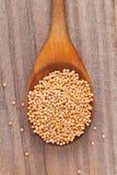 Горчичные зерна Стоковая Фотография RF