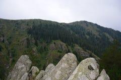 Горы ландшафта в Турции Стоковые Фото