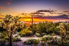 Горы Аризона суеверия стоковое фото