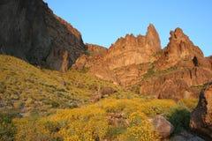горы Аризоны Стоковые Изображения