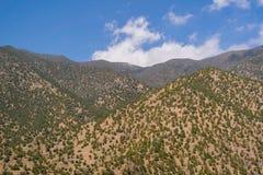 Горы атласа в Марокко, Северной Африке Стоковая Фотография RF