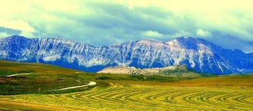 Горы Альберты Стоковое фото RF