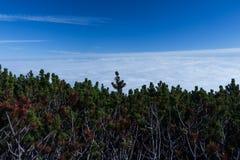 Горы благоустраивают сцену затишья природы пейзажа высоких пиков одичалую Пеший туризм перемещения образа жизни активный Сценарны стоковая фотография