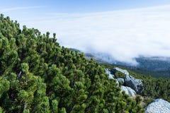Горы благоустраивают сцену затишья природы пейзажа высоких пиков одичалую Пеший туризм перемещения образа жизни активный Сценарны стоковые изображения rf