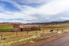 Горы Боливии, altiplano Стоковая Фотография RF