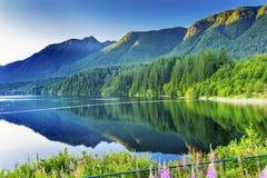 Горы Ванкувер британцы Columb зеленого цвета озера резервуар Capilano Стоковое Изображение