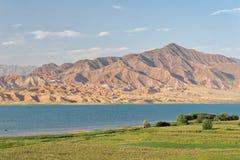 Горы вдоль резервуара Toktogul, Кыргызстана, принятого в август стоковое изображение