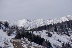 Горы во время зимы Стоковые Фотографии RF