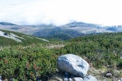 Горы в высоком Tatras стоковое изображение rf