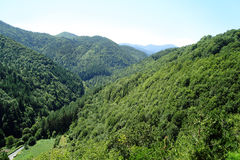 Горы в лете Стоковое фото RF