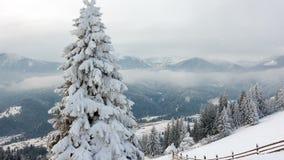Горы в зиме Сельское pezazh покрытые валы снежка счастливое Новый Год видеоматериал