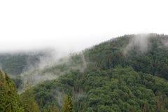 Горы в Карпатах Стоковая Фотография