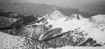 Горы в национальном парке стоковые фотографии rf