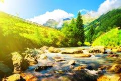 Горы в парке Стоковое Изображение RF