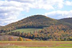 Горы в Пенсильвании в осени на ненастном после полудня стоковое фото rf