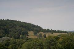 Горы в Польше - Bieszczady Стоковое фото RF