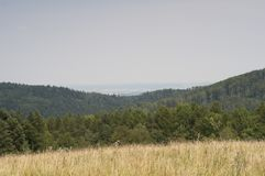 Горы в Польше - Bieszczady Стоковые Изображения