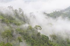 Горы в тумане Стоковое Изображение RF
