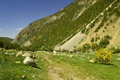 Горы в ущелье Galuyan, Кыргызстане Стоковая Фотография