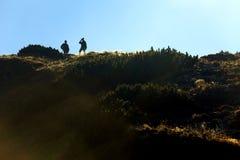 Горы в цветах осени, Zakopane Tatra, Польша Стоковое Изображение RF