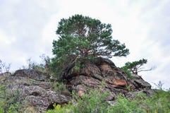 горы в bayanaul Стоковые Фото