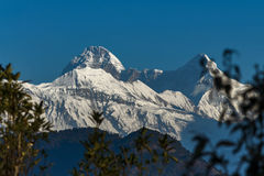 Горы Гималаев, Индии стоковое изображение