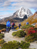 Горы Гималаев, Стоковые Изображения RF