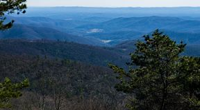 Горы голубого Риджа от бухты таза обозревают, голубой бульвар Риджа, Северная Каролина, США Стоковые Фотографии RF